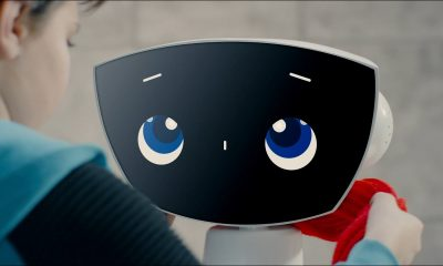 robin robot