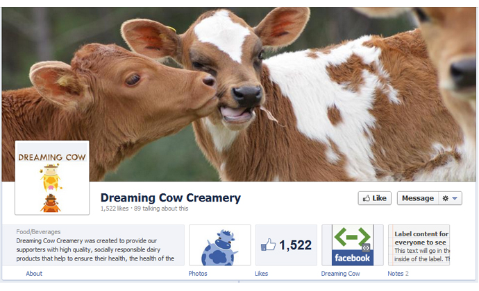 facebook pages timeline cover photos