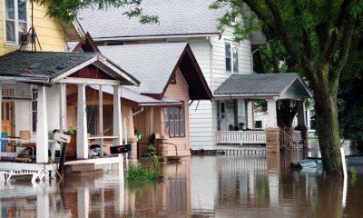 flood insurance subsidies