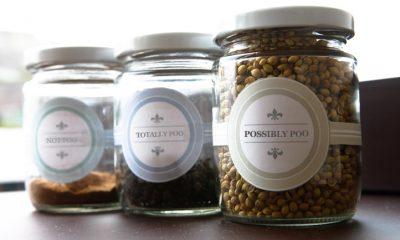 jars of poo