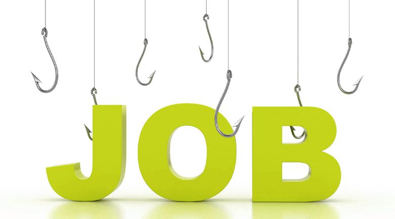 job hunt career