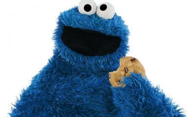 internet cookies