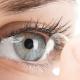 telescopic lenses