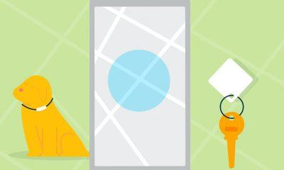 Amazon Sidewalk promotional image with key, dog, and phone in flat illustration style.