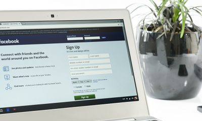 Facebook open on laptop with white desk and small potted plant, open to organic reach.