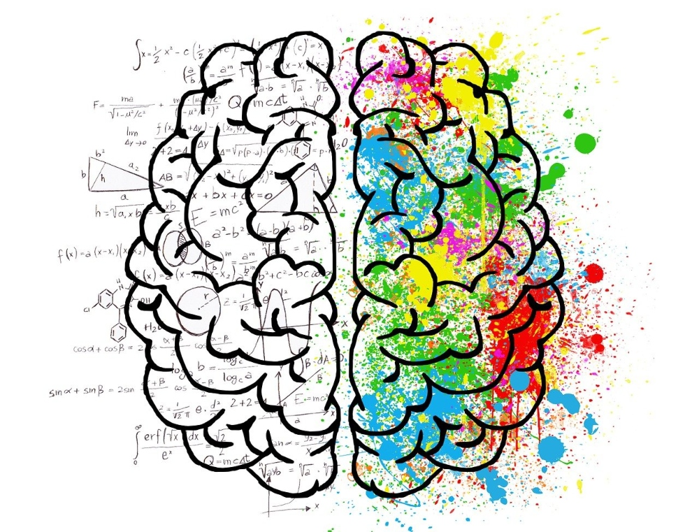 Left side of brain showing calculations and right side of brain with colorful paint, resembling creativity and learning.